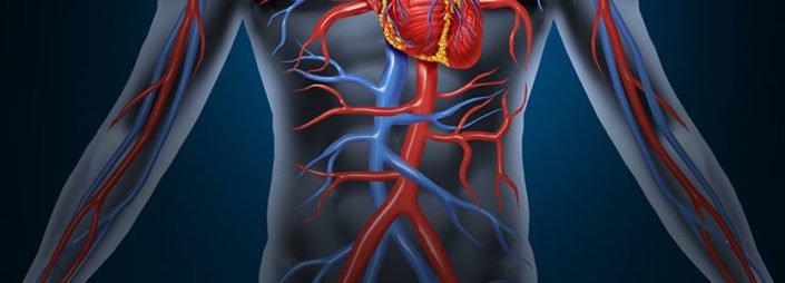 Vascular Injury in Orthopedic Trauma