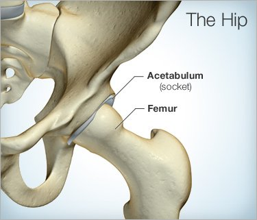 Hip Pain: Causes, Symptoms, Treatment, and More
